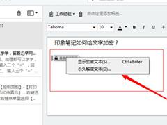 用于加密Evernote文件的图形步骤